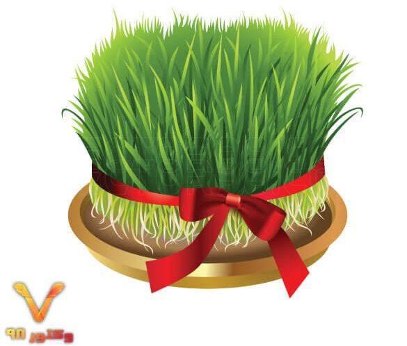 تصویر PNG دوربری شده سبزه عید با روبان قرمز