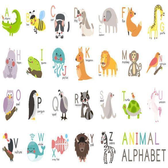 وکتور حیوانات جنگل به ترتیب حروف الفبا