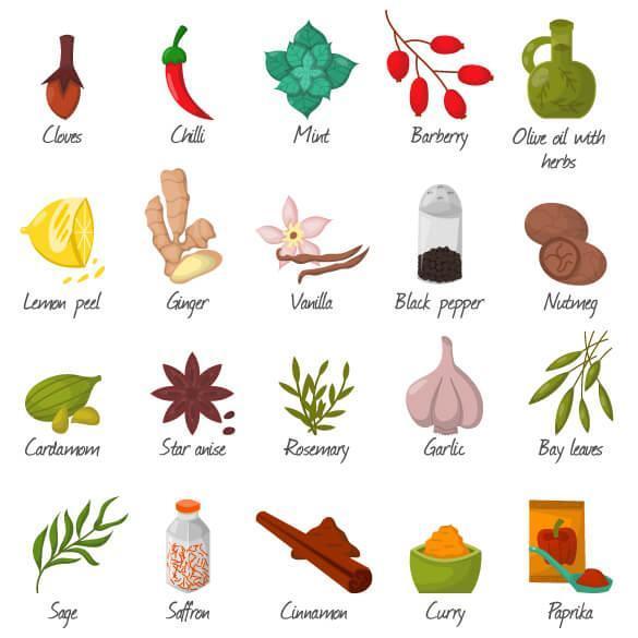 وکتور مواد غذایی ادویه جات و ترشی جات