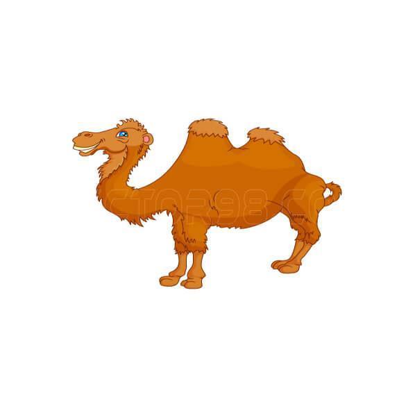 دانلود وکتور شتر